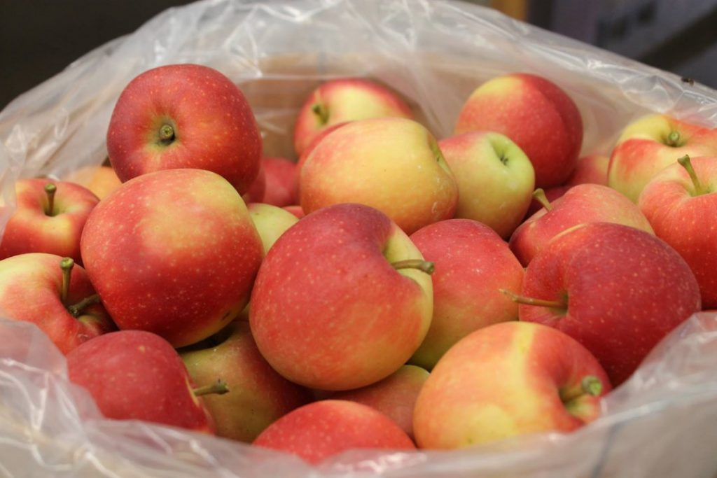 close up of apples in plastic wrap in a bucket with red and yellow hues