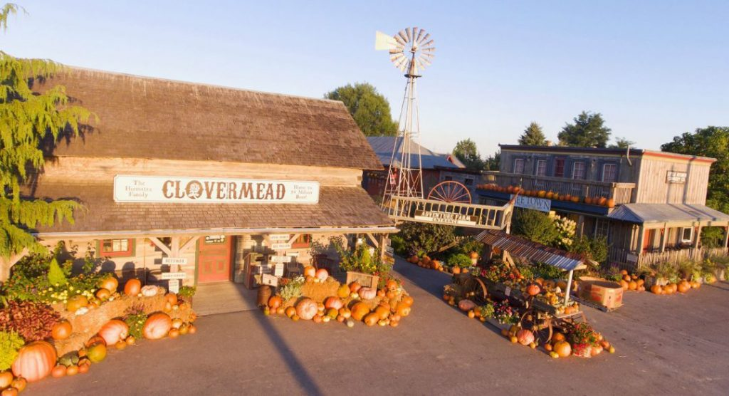 exterior of farm house with old wind mill to the right with pumpkins overflowing into driveway on a sunny day