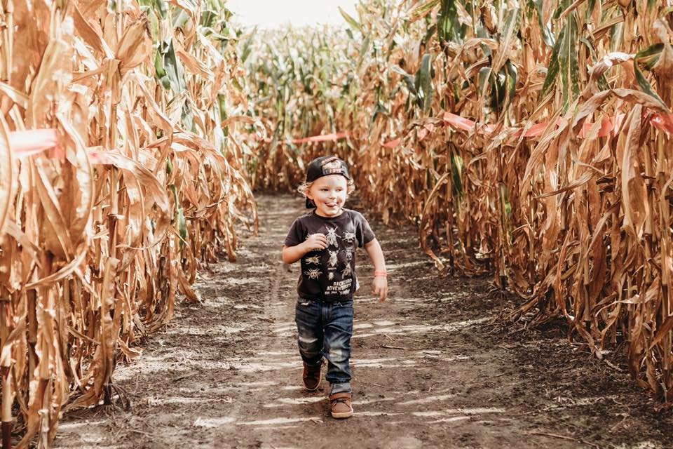 young boy running through corn field towards camera surrounded by corn on either side