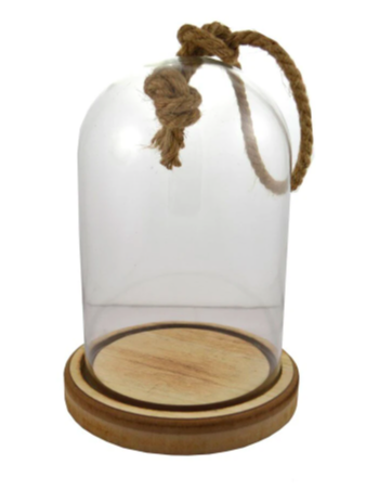 small glass terrarium with a wooden base and hemp string handle against a white background
