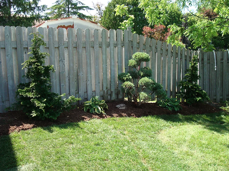 a landscaped backyard with fresh cut grass and various plants and bushes lining the back fence