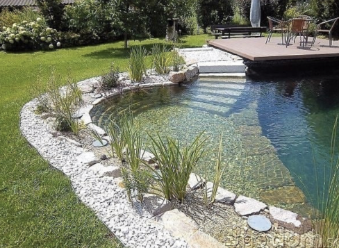 a landscaped backyard with a pool and many stone details and grassy plants surrounding the pool