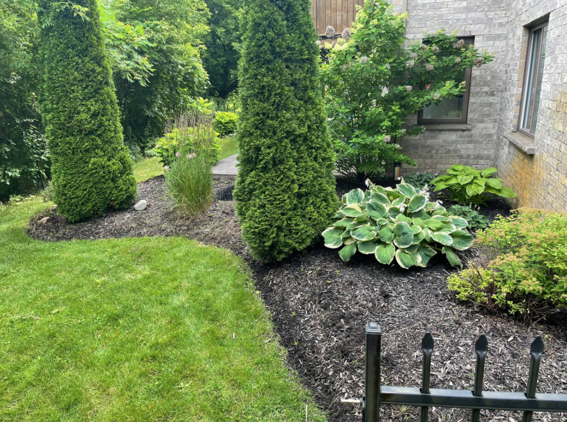 a curated garden with tall shrubs and smaller plants surrounding the back corner of the house with dark mulch