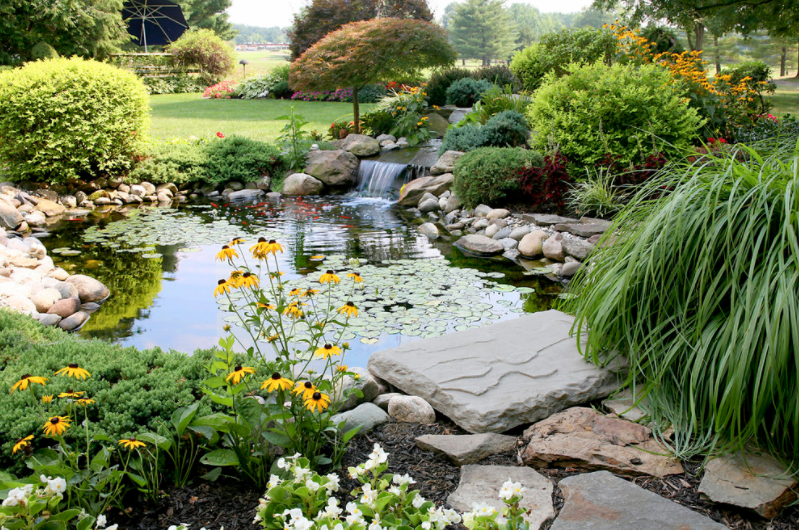 a large backyard pond with various plants and bushes surrounding it with many stone details and a small waterfall at the back