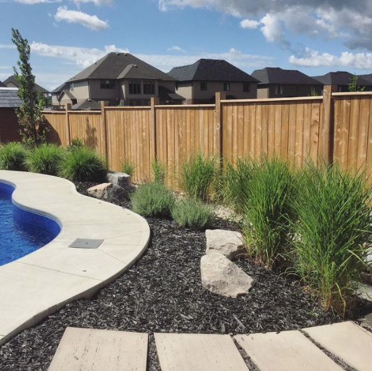 View of backyard with black dyed mulch in a garden bed with concrete pad walkway beside a pool with various grassy plants surrounding pool