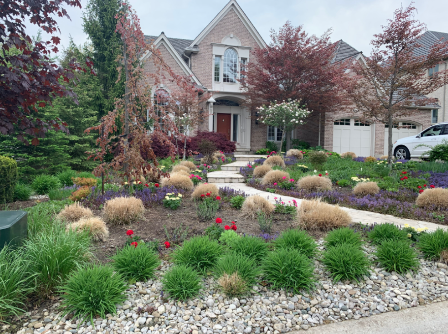 front of a house with a large garden taking up the lawn with rocks, shrubs, red and purple flowers, and various trees