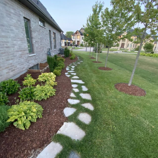 Side of a house with a large garden bed running beside it with fresh mulch just placed around the shrubs and small trees that is finished by a stone walking path beside the lawn