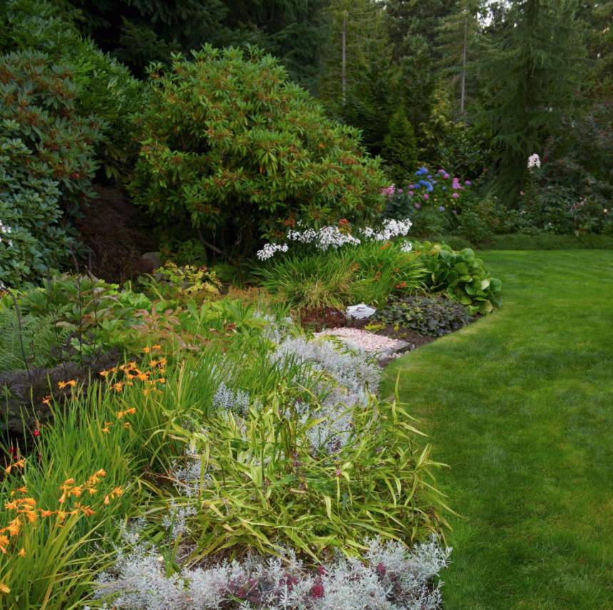 view of large garden with various plants, flowers, and trees