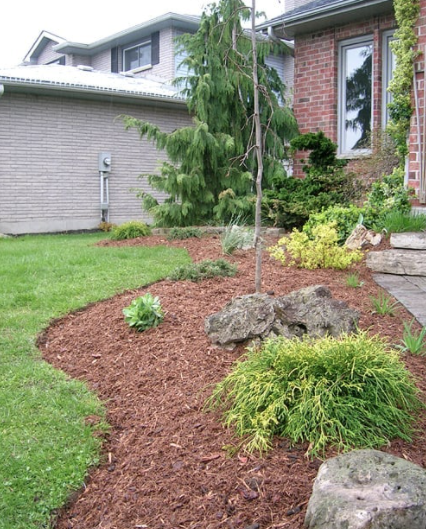 front lawn garden bed with various tree, shrub and rock features on a bed of red dyed mulch