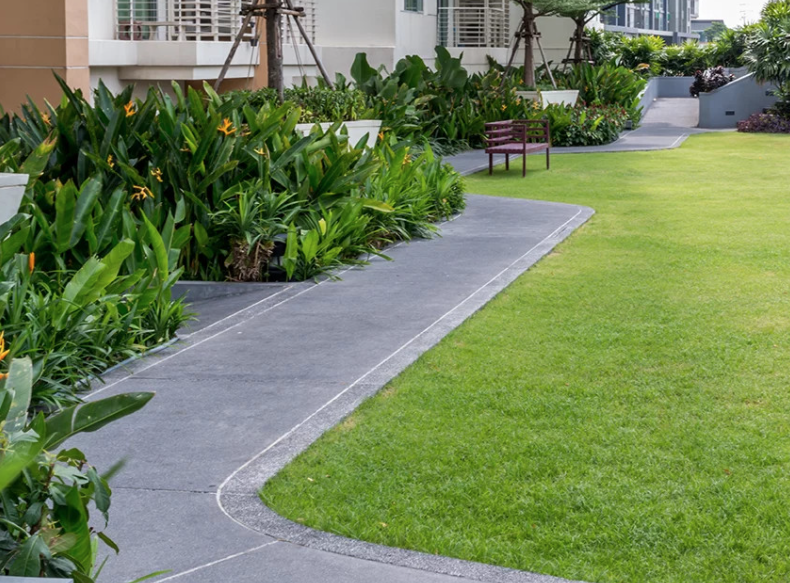 A carefully landscaped backyard with a concrete walkway leading inside with lush gardens surrounding