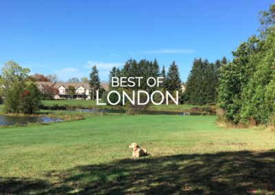 The Best Places to Walk Your Dog in London