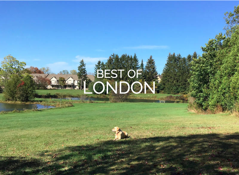 best of london places to walk your dog
