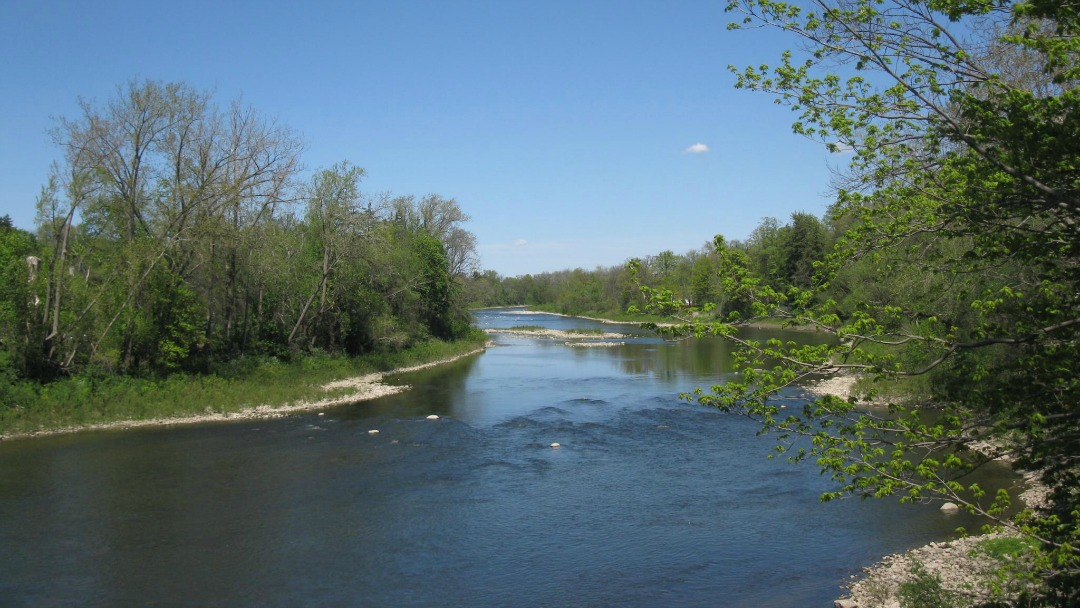 river outdoors surrounded by trees on a sunny clear day