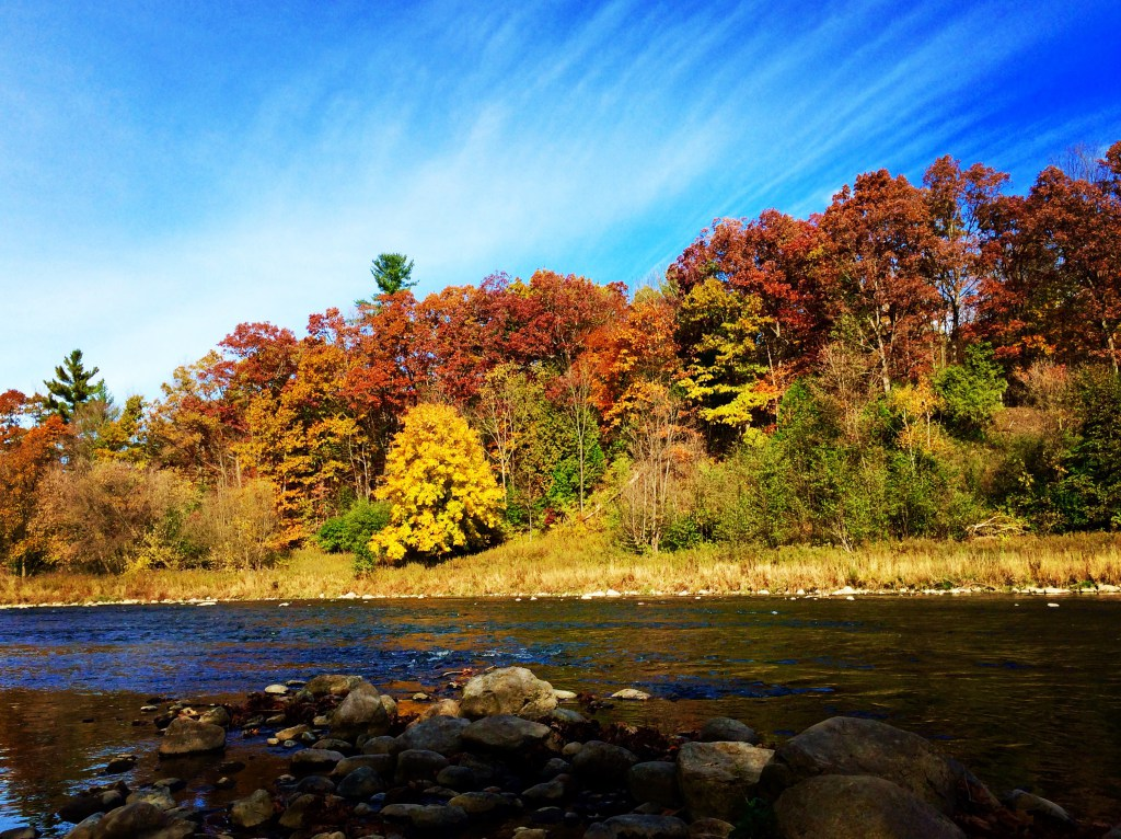 river view with fall trees and beautiful sky