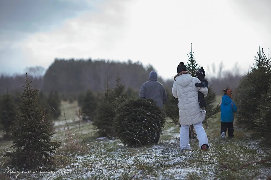 Best Winter Activities - Tree Lane Farms