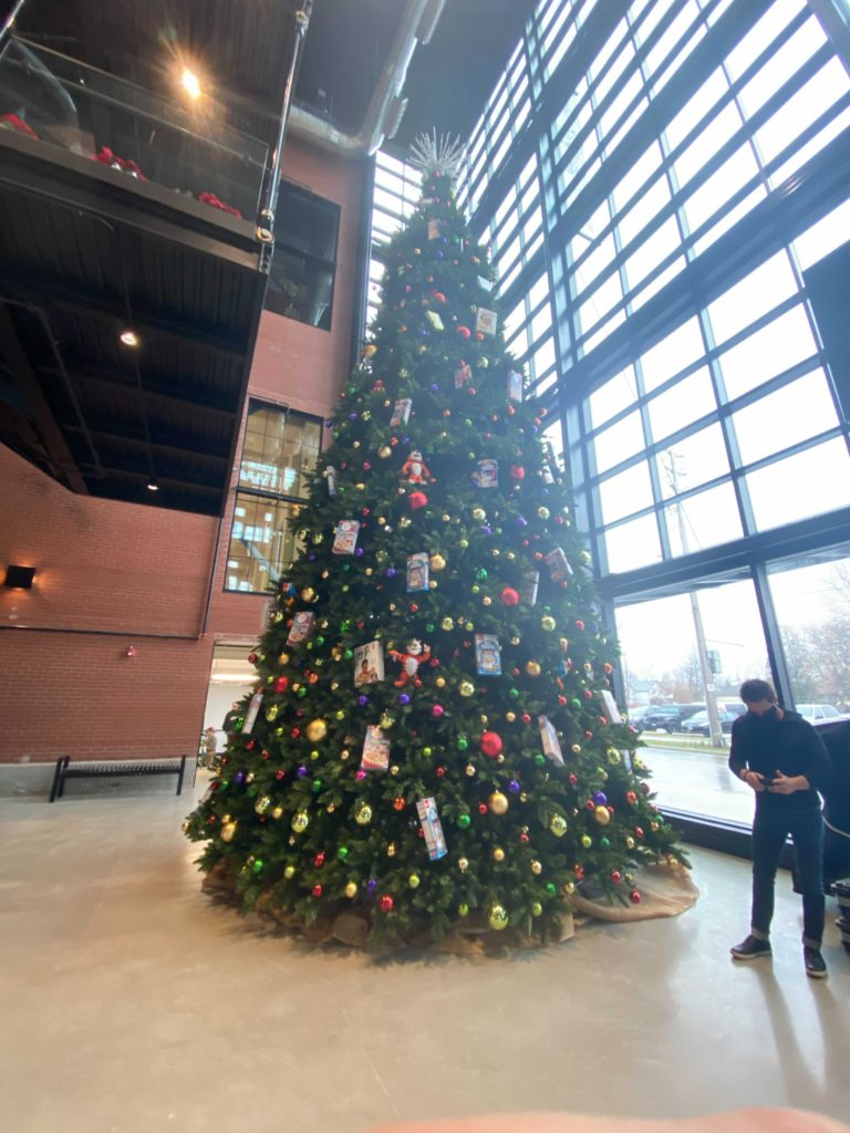 very large christmas tree inside building next to person